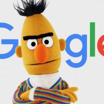 google bert update eom.de